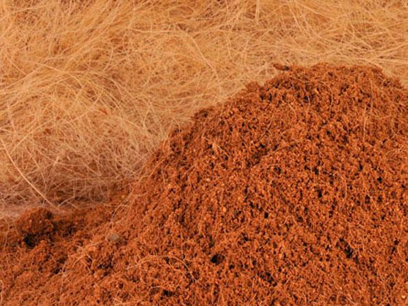coco peat suppliers chennai