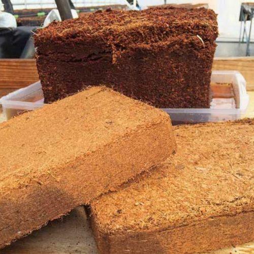 coco peat block in chennai